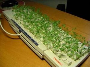 teclado_sucio-parabuenosaires.com