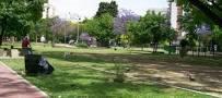 plaza irlandaa