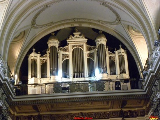 Catedral Metropolitana organo