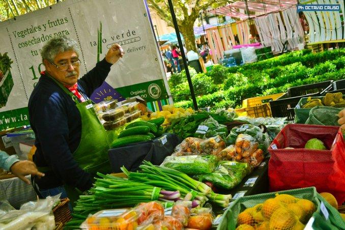 market palermo3