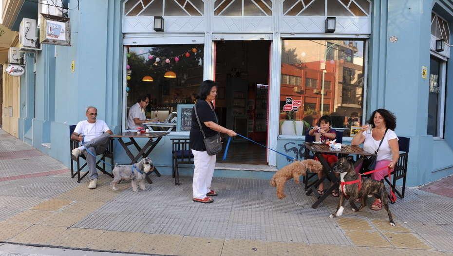 Los porteños votan si las mascotas podrán entrar a bares y restaurantes